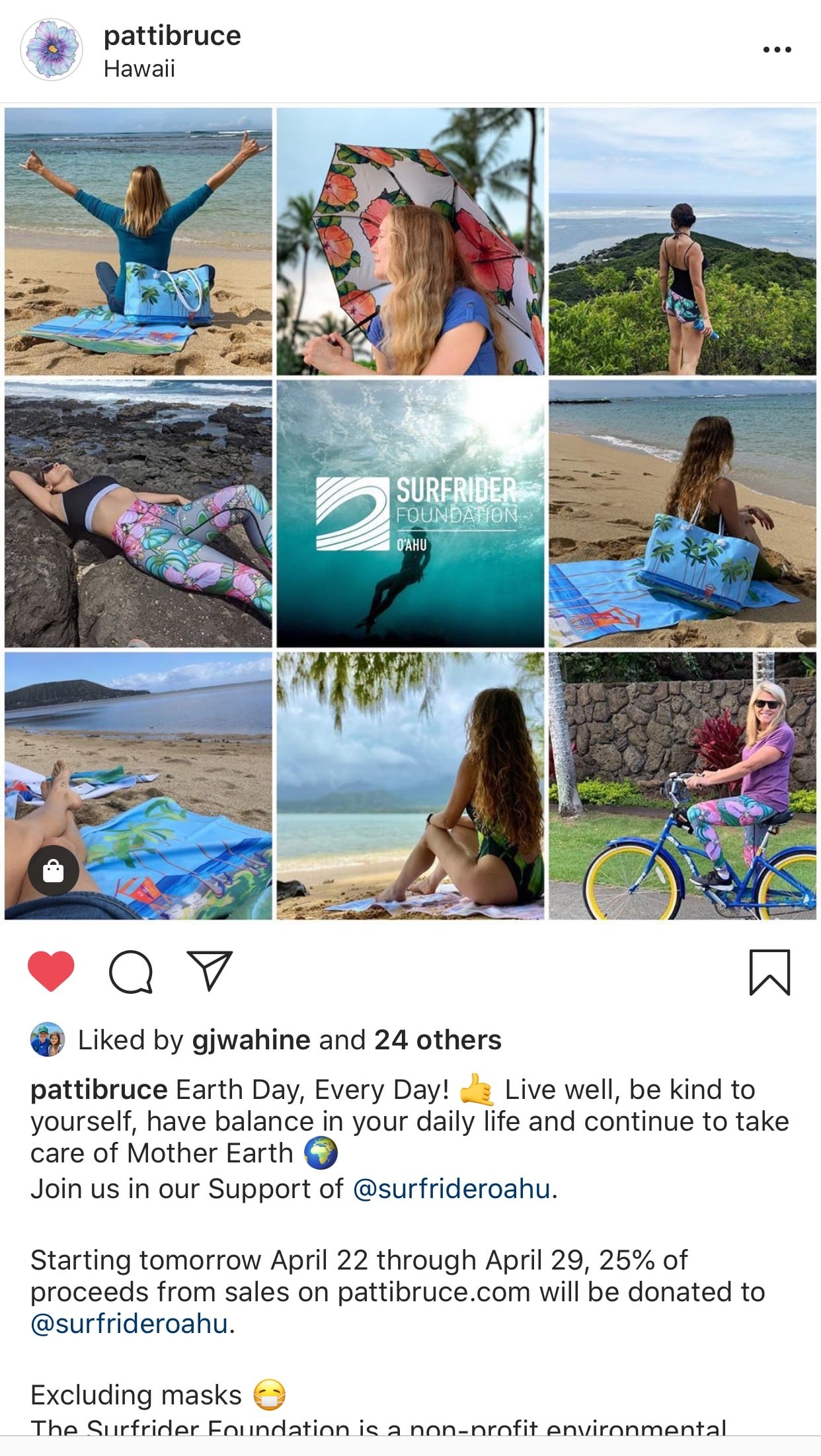 instagram screenshot of a collage of patti bruce products